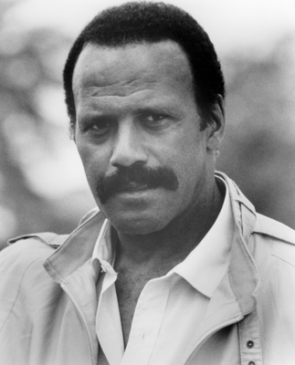 Fred Williamson poster G634605