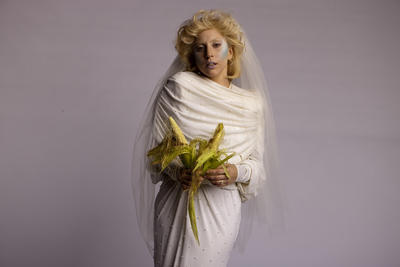 Lady Gaga poster G674347