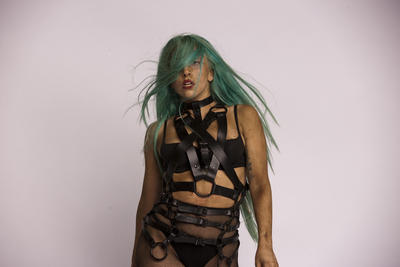 Lady Gaga poster G674349
