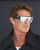David Hasselhoff picture G677916