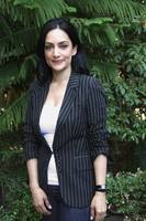 Archie Panjabi picture G679836