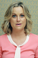 Amy Poehler picture G682967