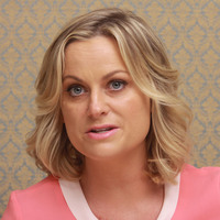 Amy Poehler picture G682969