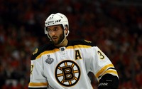 Patrice Bergeron picture G687265