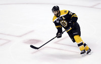 Patrice Bergeron picture G687270