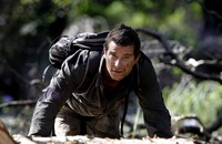 Bear Grylls picture G687985