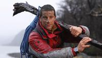 Bear Grylls picture G687995