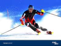 Ivica Kostelic picture G689222