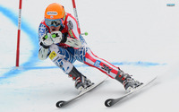 Ted Ligety picture G689599