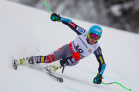 Ted Ligety picture G689617