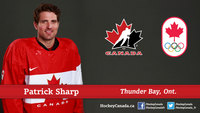 Patrick Sharp picture G689807