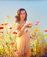 Katy Perry picture G693191
