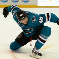Tomas Hertl picture G698381