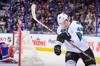 Tomas Hertl picture G698382