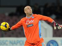 Pepe Reina picture G698874
