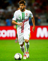 Miguel Veloso picture G698978