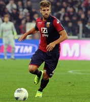 Miguel Veloso picture G698979