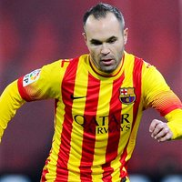 Andres Iniesta picture G699142