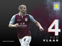 Ron Vlaar picture G700825