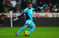 Michel Vorm picture G700871