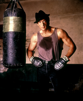 Sylvester Stallone picture G706918