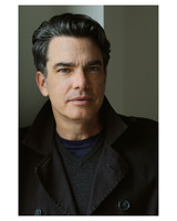 Peter Gallagher picture G726059