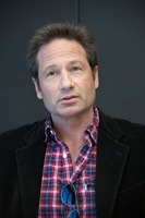 David Duchovny picture G732794