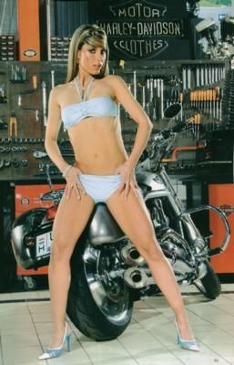 Diana Poth poster G74100