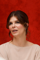 Jeanne Tripplehorn picture G742618