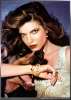 Stephanie Seymour picture G77698