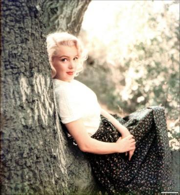 Marilyn Monroe poster G78961