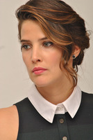Cobie Smulders picture G799300