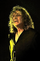 Robert Plant picture G809267