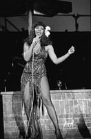 Donna Summer picture G333376