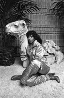 Donna Summer picture G809306