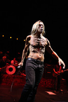Iggy Pop picture G810093