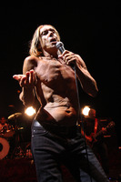 Iggy Pop picture G810094