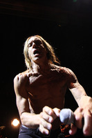 Iggy Pop picture G810095