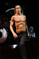 Iggy Pop picture G810096