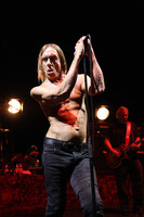 Iggy Pop picture G810097
