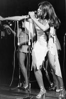 Tina Turner picture G813579