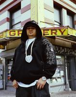 Fat Joe picture G815797