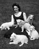 Linda Darnell picture G817689