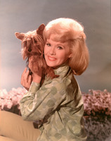 Connie Stevens picture G822196