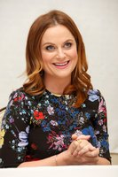 Amy Poehler picture G831195
