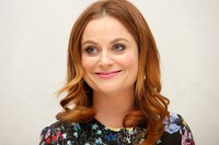 Amy Poehler picture G831197