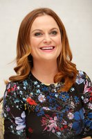 Amy Poehler picture G831198