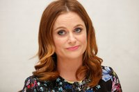 Amy Poehler picture G831199