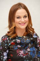 Amy Poehler picture G831200