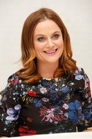 Amy Poehler picture G831202